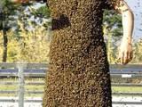 Bienenmann