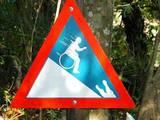Verrückte  Warnung