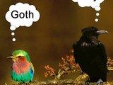 Gothic und Gay