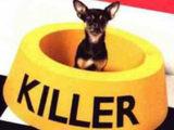 Der Killer bei dir Zuhause
