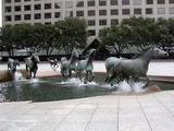 Aufgescheuchte Pferde