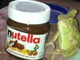 Geh von der Nutella weg