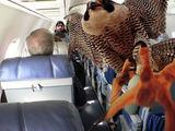 Tiere im Flugzeug