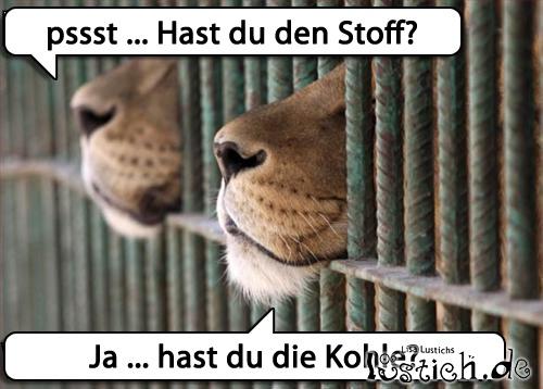 Gefängnisgespräch