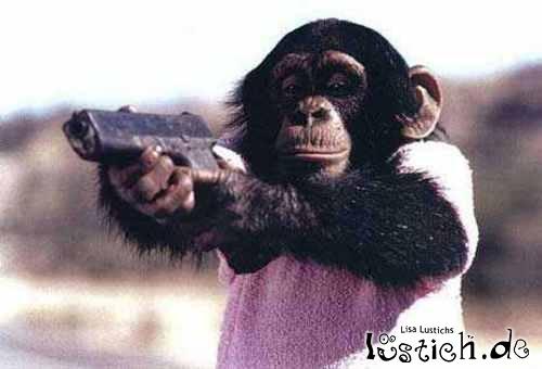 Gefährlicher Affe