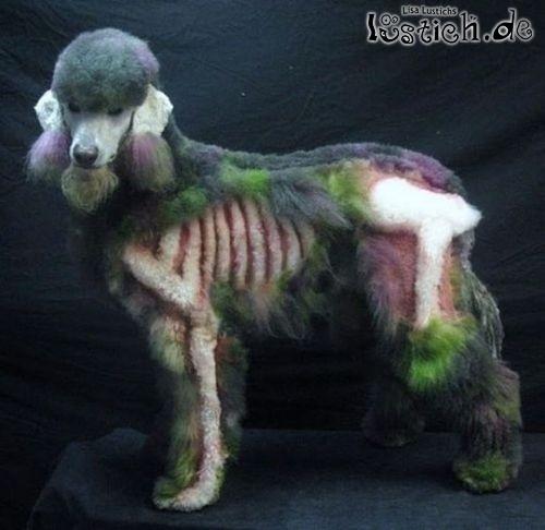 Halloween Pudel