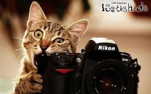 Hungriger Fotograf