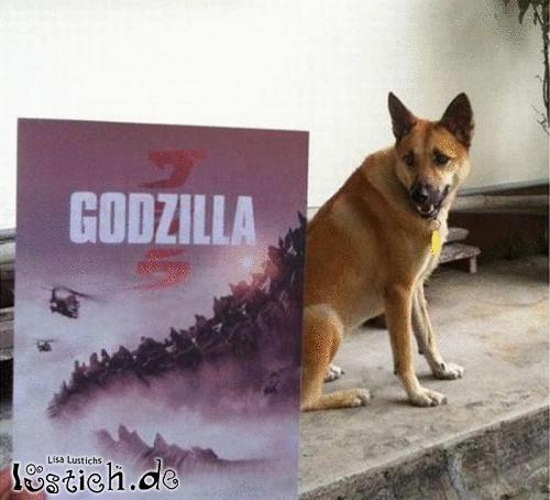 Godzilla Hund