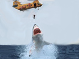 Haiangriff
