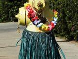 Aloha Hydrant