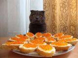 Sind die für mich?