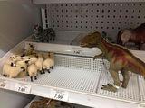 Spass im Spielzeugladen
