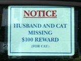 Mann und Katze verloren